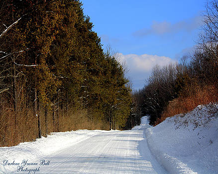 Darlene Bell - Country Road In Winter