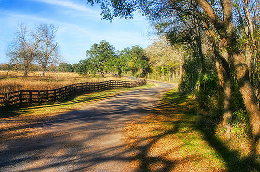 Country Road by Joan Bertucci