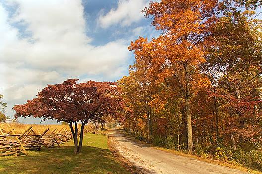Mick Burkey - Country Road