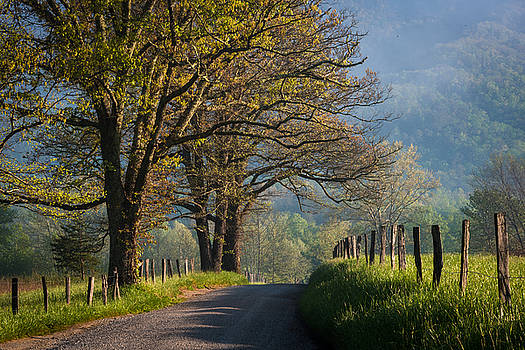 Country Road by Mike  Walker