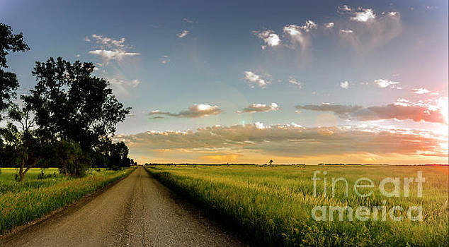 Country Road by Patrick Ziegler