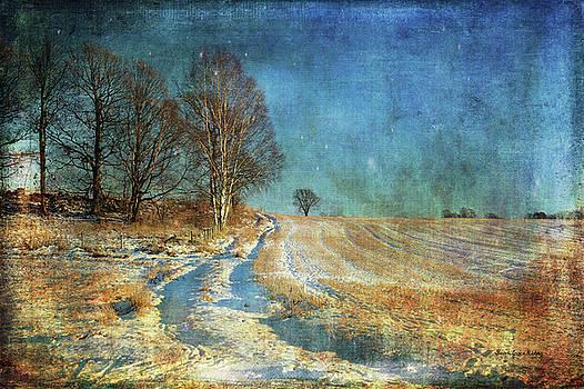 Country Road by Randi Grace Nilsberg