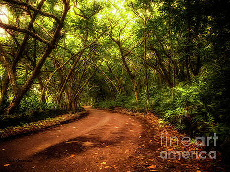 Country Road, Take Me Home  ... by Chuck Caramella