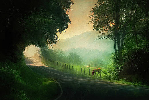 Country Road by William Schmid