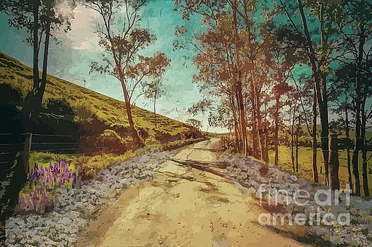 Country Road With Wild Flowers by Clive Littin