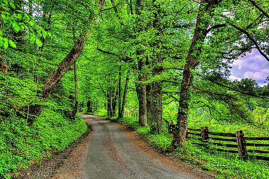Country Roads by Dale R Carlson