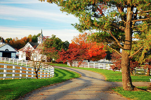 Country Roads by James Kirkikis