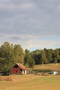 Country Scene by Diane Merkle