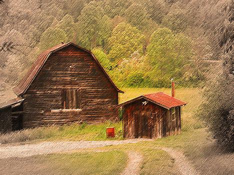 Country shack by Itai Minovitz