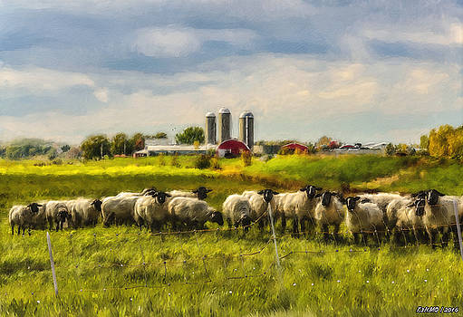 Country Sheep by Ken Morris