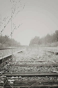 Country Tracks BW by Megan Swormstedt