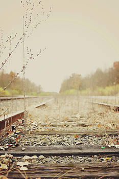 Country Tracks  by Megan Swormstedt