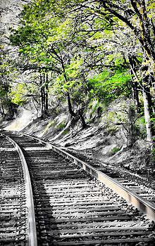 Country Train Tracks by Athena Mckinzie