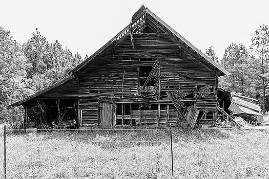 Country Treasure BW by Newman Artography