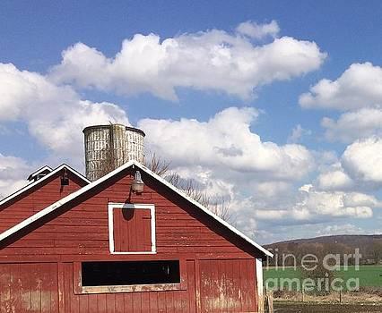 Country  by Vicki Lynn Sodora