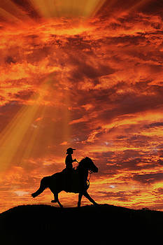 Country Western Riding Cowboy and Sunset by Stephanie Laird