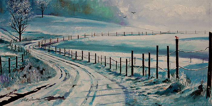 Country Winter Scene by Bill Dunkley