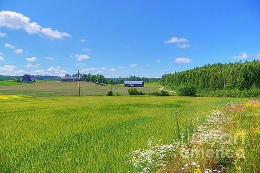 Countryside III by Veikko Suikkanen