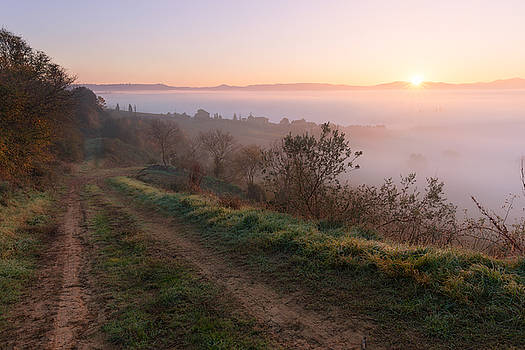 Countryside landscape at foggy sunrise by Nickolay Khoroshkov