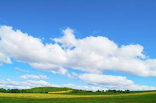 Countryside  by Naomi Burgess