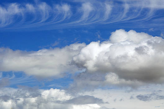 Courting Clouds by Gwyn Newcombe