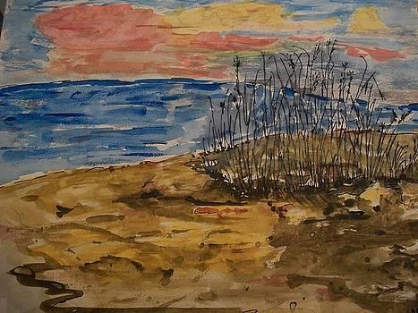 Cove by Anne Costa