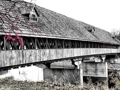 Scott Hovind - Covered Bridge 2