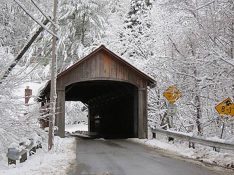 MTBobbins Photography - Covered Bridge - Coombs Bridge