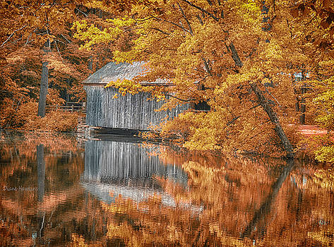 Covered Bridge by Diane Hawkins
