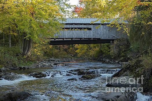 Bob Phillips - Covered Bridge over Brown River