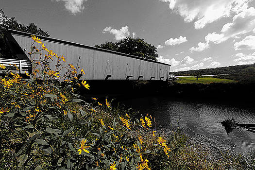 Covered Bridge by Steve ODonnell