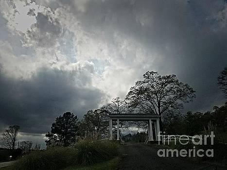 Maria Urso - Covered Hilltop