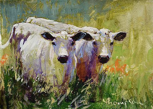 Cow Boys 2 by Tracie Thompson
