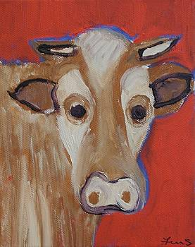 Cow Face by Fran Steinmark