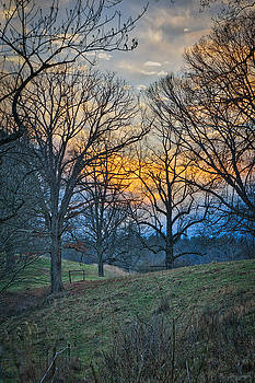 Cow Pasture at Dusk by Brian Shepard