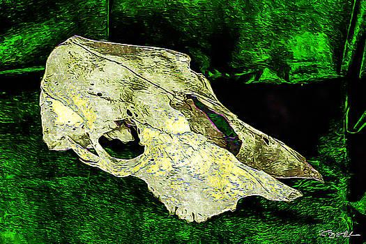 Ronda Broatch - Cow Skull 5