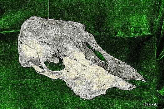 Ronda Broatch - Cow Skull