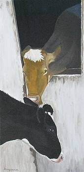 Cow Talk by Barb Pennypacker