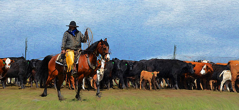 Cowboy on bay by Susie Fisher