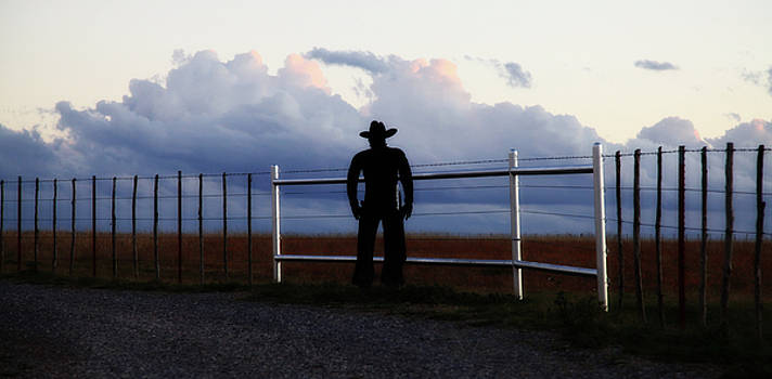 Cowboy on the Ranch by Toni Hopper