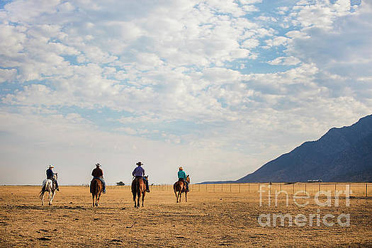 Cowboys on the Open Range by Diane Diederich