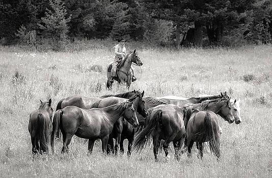 Cowgirls Horse Ranch by Athena Mckinzie