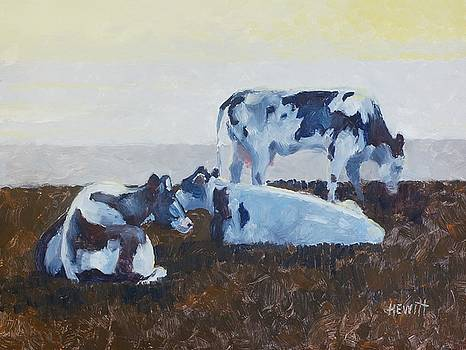 Cows in mid-day heat by Philip Hewitt