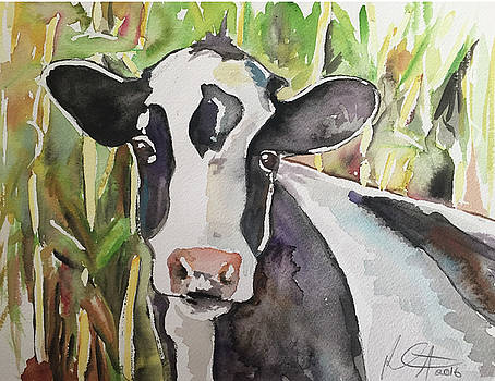 Cow's in the Corn 2 by Kathryn Armstrong