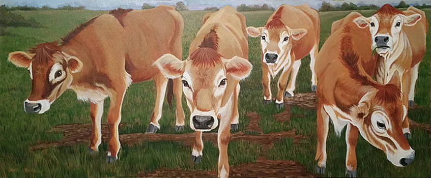 cows on Schutt road by Laura Bolle