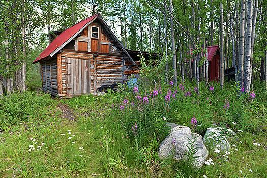 Cozy Cabin  by Jeffrey Hamilton