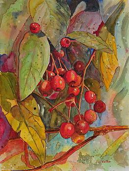 Crab Apples I by John W Walker