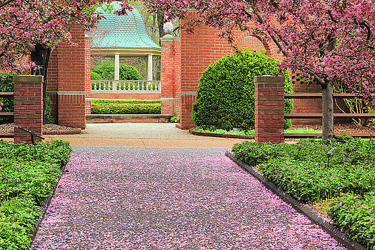 Crab Blossom Pathway by Greg Matchick