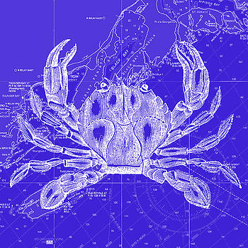 Crab Nautical Decor by Noah Browning