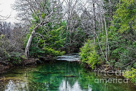 Paul Mashburn - Crab Orchard Creek